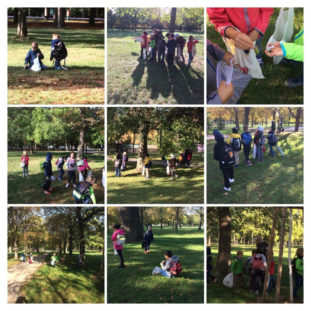 Kinder der 1B beim Kastanien sammeln